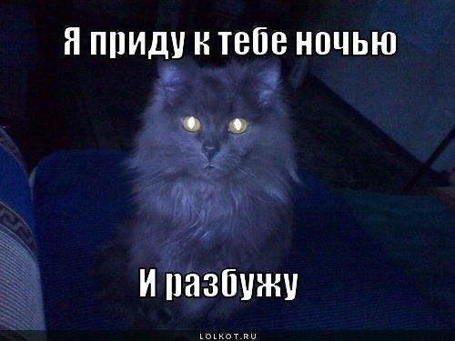 pridu-k-tebe_1375039780.jpg