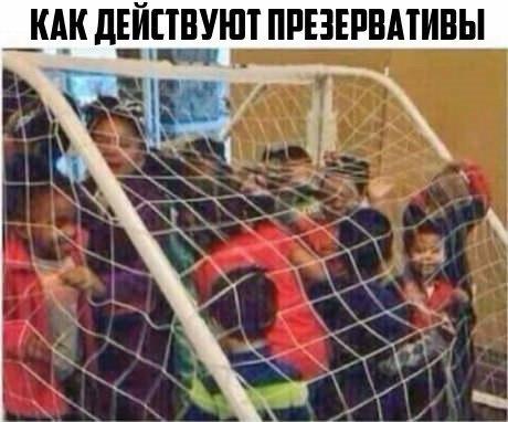VK_Saved_Photo_ 636293529239420764.jpg